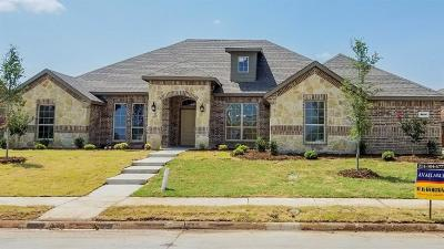 Rockwall Single Family Home For Sale: 3106 Guadalupe Drive