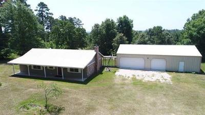 Harrison County Single Family Home For Sale: 167 E Mobley Street