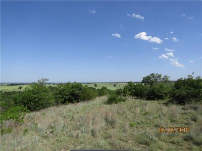 Comanche County Farm & Ranch For Sale: 000a County Road 343