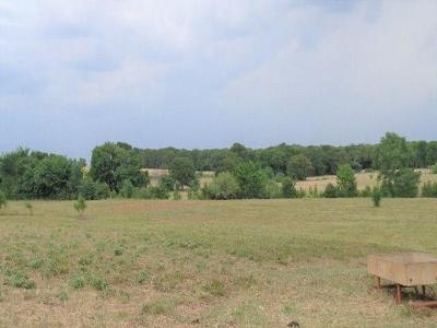 Wills Point Residential Lots & Land For Sale: 00 Vz Cr 2120