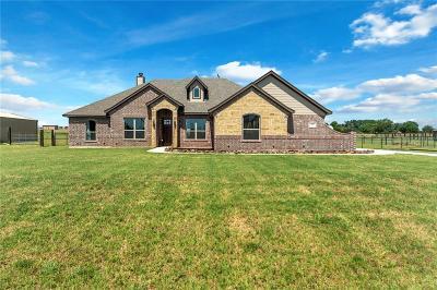 Springtown Single Family Home For Sale: 104 Remington Park Drive