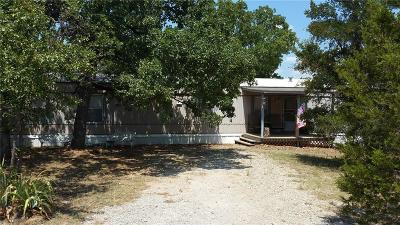 Palo Pinto Single Family Home For Sale: 1282 N Lakeview Drive
