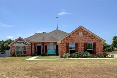 Springtown Single Family Home For Sale: 125 Plantation Oaks Court