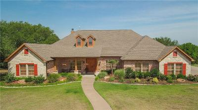 Granbury Single Family Home Active Kick Out: 3506 Grand Harbor Court
