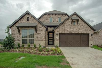 Little Elm Single Family Home For Sale: 5200 Shallow Pond Drive