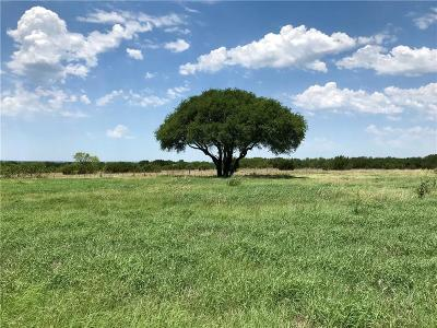 Dublin Farm & Ranch For Sale: 908 Private Road 1674