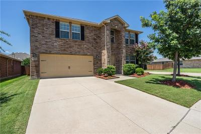 Frisco Single Family Home For Sale: 13087 Michelle Drive