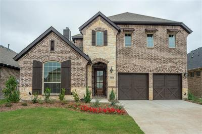 Little Elm Single Family Home For Sale: 5112 Shallow Pond Drive