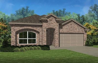 Fort Worth Single Family Home For Sale: 15809 White Mill Road