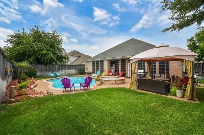 Arlington Single Family Home For Sale: 1015 Pegasus Drive