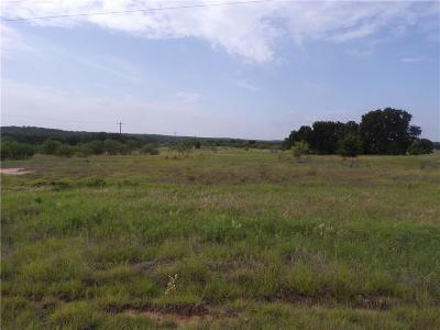 Parker County, Tarrant County, Wise County Residential Lots & Land For Sale: 180 Silver Lakes Drive