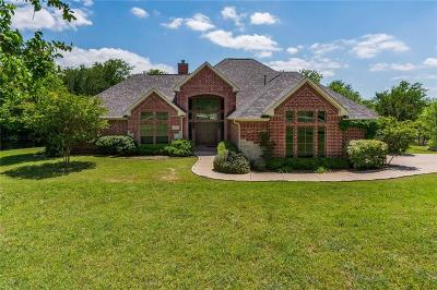 Gunter Single Family Home For Sale: 103 Falls Creek Lane