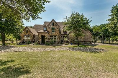Lipan Single Family Home For Sale: 747 S Sugartree Drive