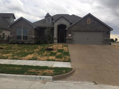 Benbrook Single Family Home For Sale: 10908 Slick Rock Drive