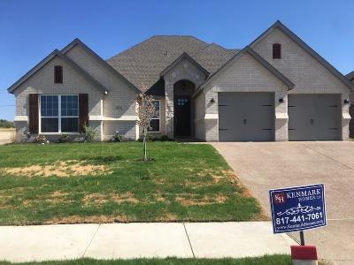 Benbrook Single Family Home For Sale: 10912 Slick Rock Drive