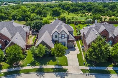 Frisco Single Family Home For Sale: 3447 Columbus Drive