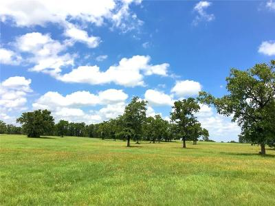 Palo Pinto County Farm & Ranch Active Option Contract: Tbd B Jw Tipps Road
