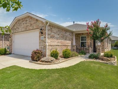 Frisco Single Family Home Active Option Contract: 2637 Honeybee Lane