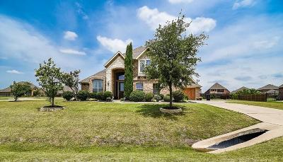 Single Family Home For Sale: 1348 Twisting Wind Drive