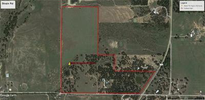Millsap Farm & Ranch For Sale: 288 Strain Road