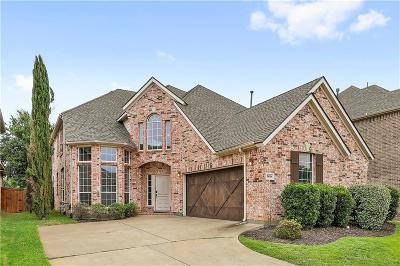 Flower Mound Single Family Home For Sale: 3624 Andrea Drive