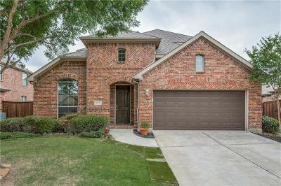 Little Elm Single Family Home For Sale: 2472 Greenbrook Drive