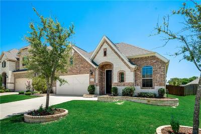 Single Family Home For Sale: 5517 Ivyridge Lane