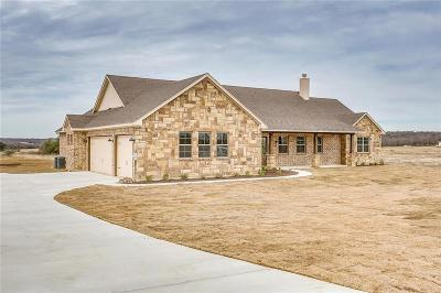 Millsap Single Family Home For Sale: 165 El Dorado Trail