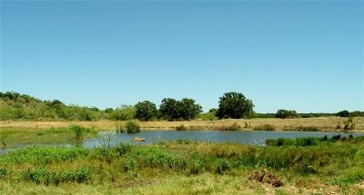 Brown County Farm & Ranch For Sale: 1950 W Fm 2273