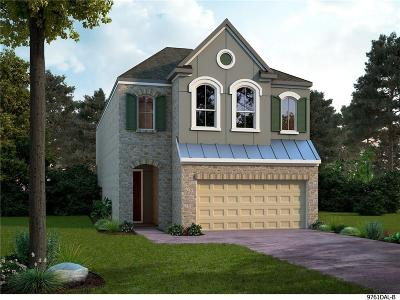 Dallas Single Family Home For Sale: 623 Aspen Valley Lane