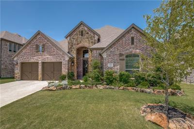 Frisco Single Family Home For Sale: 13683 Stallion Heights Lane