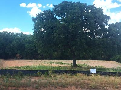 Hood County Residential Lots & Land For Sale: 8042 White Drive