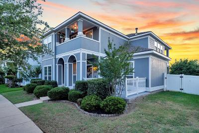 Savannah Single Family Home For Sale: 1125 Wenk Drive
