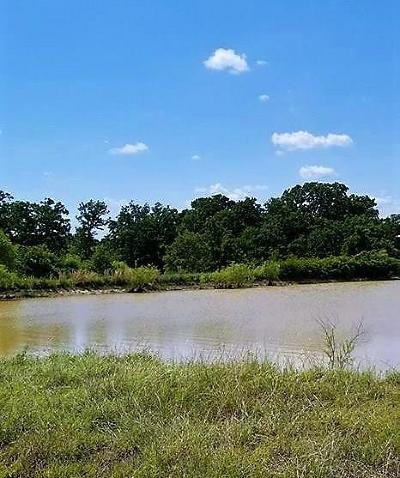Weatherford Farm & Ranch For Sale: 97 A Loggins Trail