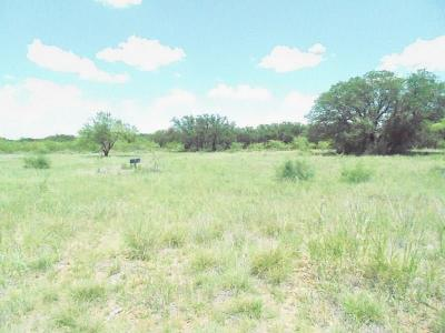 Brown County Residential Lots & Land For Sale: 9999 F.m. 2632