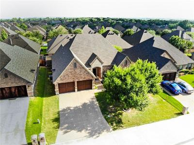 Willow Park Single Family Home For Sale: 197 Winged Foot Drive