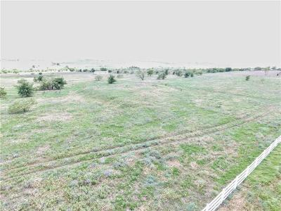 Parker County, Tarrant County, Wise County Residential Lots & Land For Sale: 166a John Chisholm Road