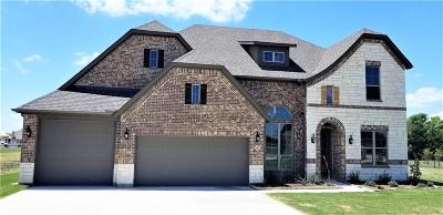 McKinney Single Family Home For Sale: 219 Meadow View Drive