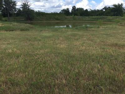 Carbon Farm & Ranch For Sale: Tbd Cr 415
