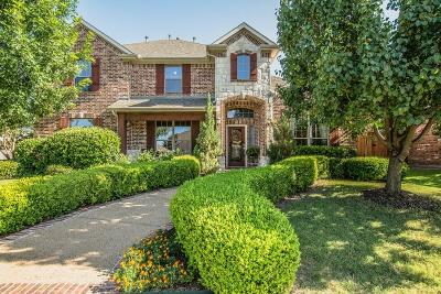 Allen Single Family Home For Sale: 1420 Creek Springs Drive