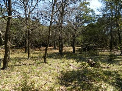 Hood County Residential Lots & Land For Sale: 3555 Tin Top Highway