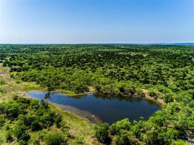 Palo Pinto County Farm & Ranch For Sale: Tbd Hwy 337