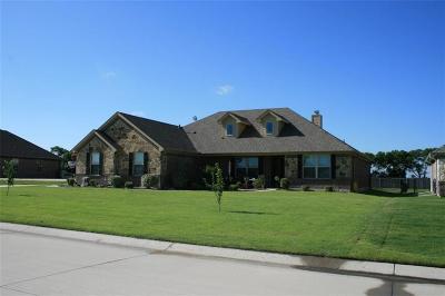 Nevada Single Family Home For Sale: 607 Brooks Drive