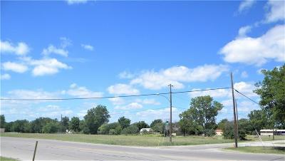 Palo Pinto County Commercial Lots & Land For Sale: 0000 S Oak Avenue