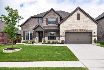 McKinney Single Family Home For Sale: 1313 Grapevine Cove