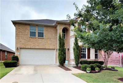 Frisco Single Family Home For Sale: 13062 Minnow Way