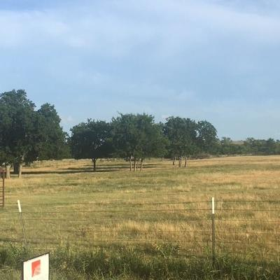 Weatherford Residential Lots & Land For Sale: Tbd Sylvan Valley Drive