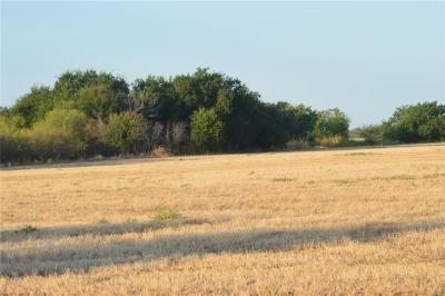 Archer County Residential Lots & Land For Sale: 20 N Fm 1954