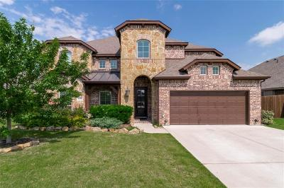 Mansfield Single Family Home For Sale: 1204 Star Grass Drive