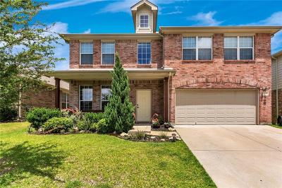 Single Family Home For Sale: 4233 Enchanted Rock Lane